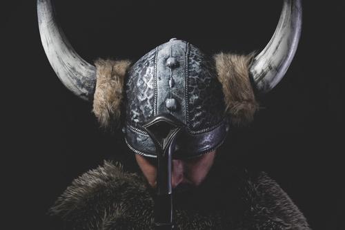 Nordic leadership_Viking Leadership_IME_leadership courses